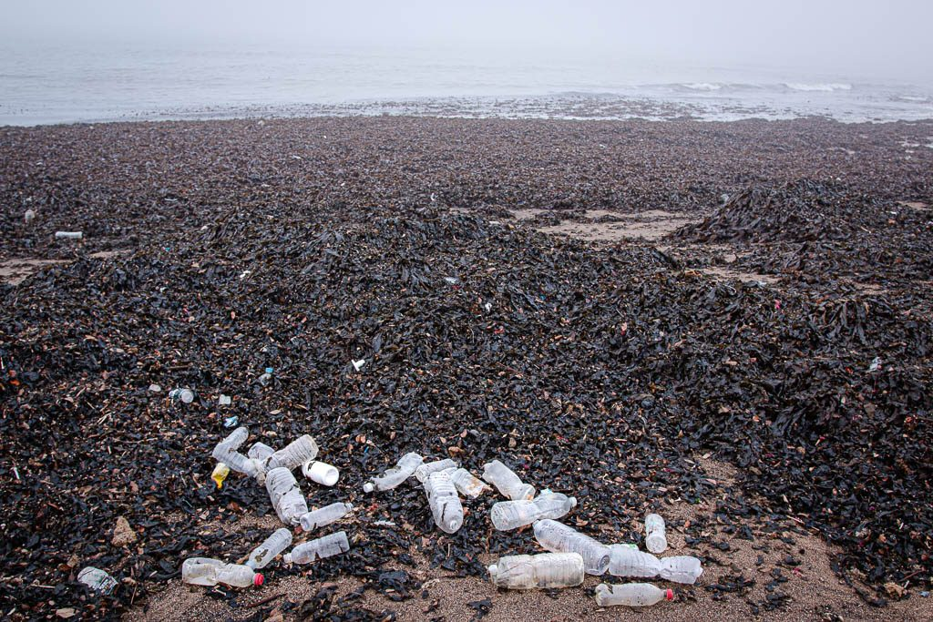 Plastic bottles washed ashore on a beach in Jeju Island (South Korea) after a storm.