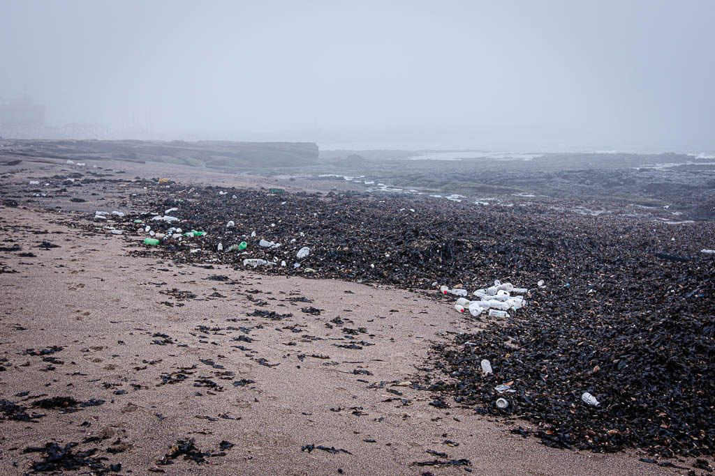 Plastic bottles and other garbage washed ashore on a beach in Jeju Island (South Korea) after a storm.